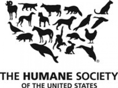 Jocelyn Nickerson, Nebraska Stae Director for the Humane Society of the United States will join Jon and Talkin' Pets 1/11/20 at 635pm ET to discuss a local mountain lion was killed by a trophy hunter