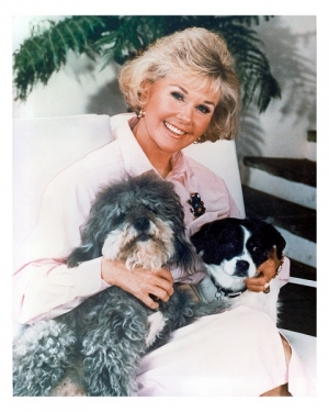 Lea Price, Director of Communications for the Doris Day Animal Foundation will join Jon and Talkin' Pets 2/29/20 at 630pm ET to discuss Doris, her love of animals, the foundation and the property from the estate of Doris Day Auction