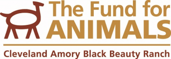 Noelle Almrud, Director of the Cleveland Amory Black Beauty Ranch will join Jon & Talkin' pets 12/12/20 at 630pm ET to discuss the 12 days of Equine Christmas