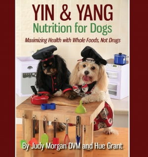 Author of Yin & Yang Nuitrition for Dogs, Dr. Judy Morgan will join Jon and Talkin' Pets 9/08/18 at 5pm EST to discuss and give away her new book