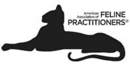 American Association of Feline Practitioners Opposes Declawing of Cats